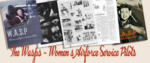 American Women Wartime Guides - The Wasp